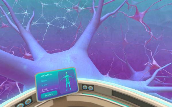 neurons-vr